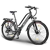 ESKUTE Elektrofahrrad 28 Zoll Pedelec E-Citybike Wayfarer E-Bike mit 36V 10Ah Lithium-Akku, 250W Heckmotor Hollandrad, Deine verlässlichen Begleiter im Alltag